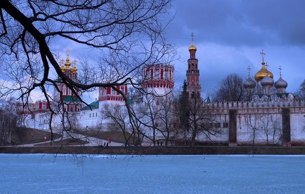 Фото обои зима, ветки, река, дерево, Москва, Россия, монастырь, Москва-река, Новодевичий монастырь