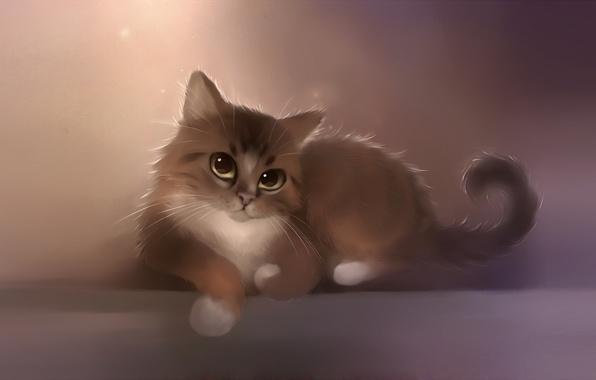 Картинка кошка, кот, усы, взгляд, котенок, рисунок, лапы, художник, хвост, apofiss, berlioz