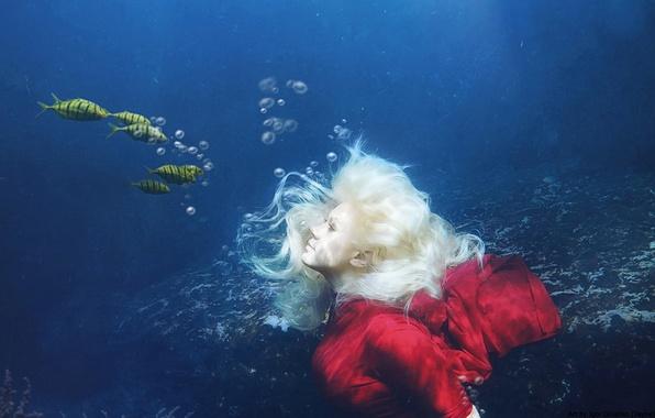 Картинка море, вода, девушка, рыбы, под водой, фотоарт