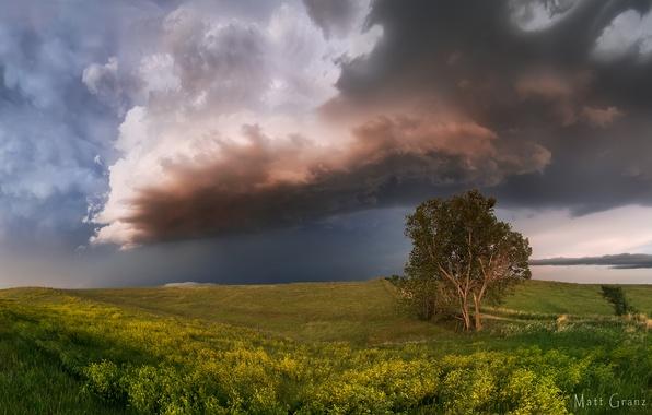 Картинка лето, небо, облака, тучи