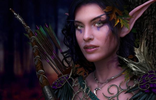 Картинка девушка, украшения, эльф, лук, эльфийка, уши, стрелы