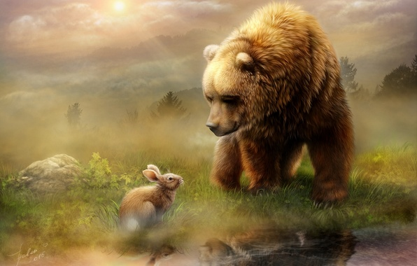 Картинка животные, вода, свет, отражение, встреча, заяц, утро, медведь, луг