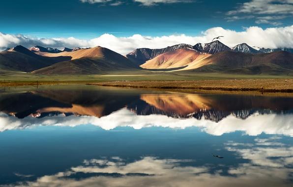 Картинка небо, облака, полет, горы, озеро, отражение, птица, китай, china, тибет, tibet