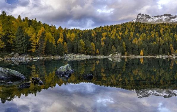 Картинка осень, лес, деревья, горы, озеро, отражение, Швейцария, Switzerland, Val di Campo, Lago di Saoseo, Poschiavo, …