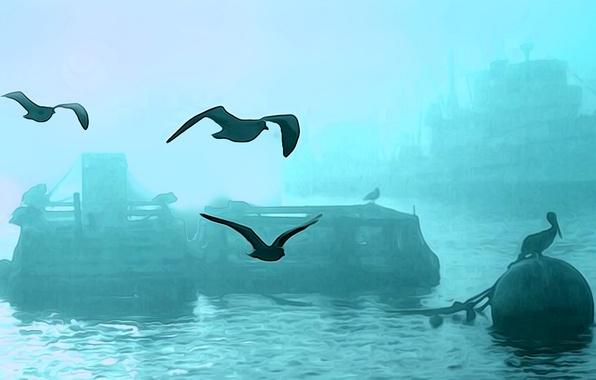 Картинка птицы, туман, корабль, гавань