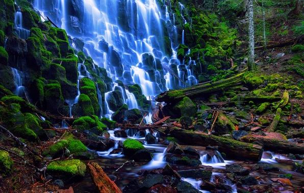 Картинка лес, лето, ветки, камни, водопад, мох, Орегон, США, потоки, Август, национальный лес Маунт-Худ, Ramona Falls
