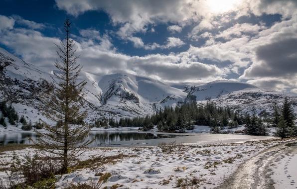 Картинка зима, лес, небо, снег, деревья, горы, природа, река