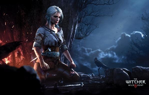 Картинка лес, девушка, ночь, огонь, медитация, The Witcher, Ciri, cirilla, The Witcher 3: Wild Hunt |
