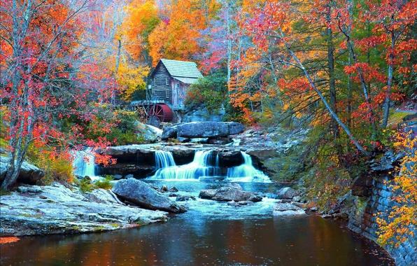 Картинка осень, лес, деревья, камни, водопад, домик, США, речка, Babcock State Park