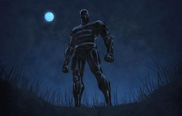 Картинка трава, ночь, поза, Луна, костюм, Marvel Comics, T'Challa, Черная пантера, Black Panther