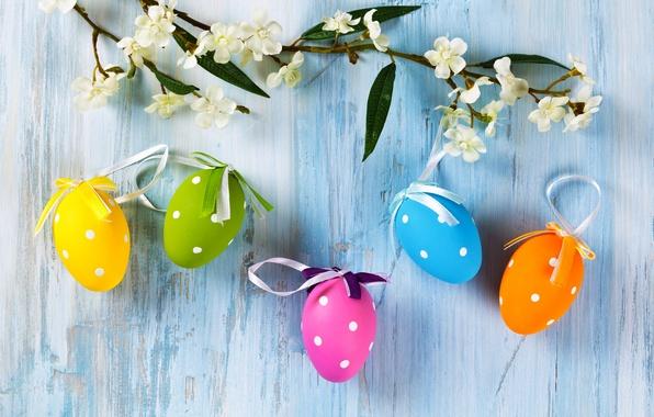 Картинка цветы, стена, праздник, яйца, ветка, Пасха, крашенки
