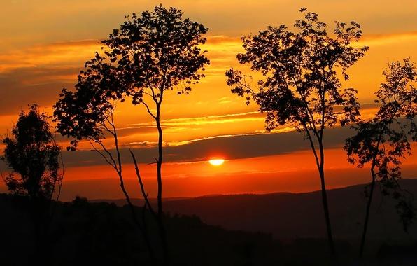 Картинка небо, солнце, облака, деревья, закат, холмы, силуэт