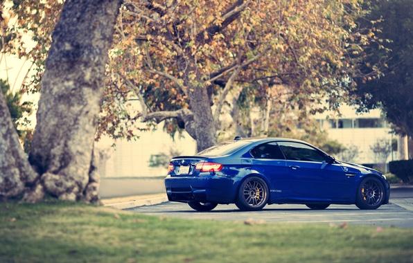 Картинка деревья, синий, бмв, купе, BMW, Coupe, blue, E92