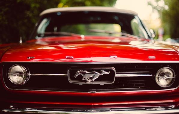 Картинка красный, Mustang, мустанг, red, ford, форд, передок, classic, боке