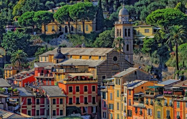 Картинка деревья, пейзаж, краски, башня, дома, склон, Италия, церковь, Портофино