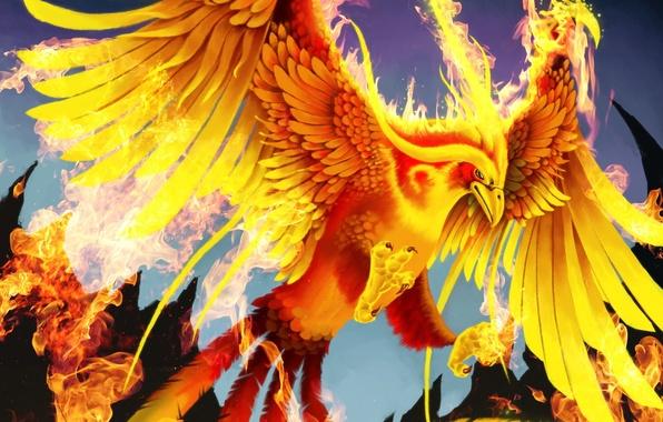 Картинка огонь, птица, крылья, арт, хвост, феникс