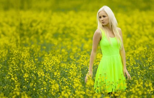 Картинка поле, девушка, цвет, платье, Cathy
