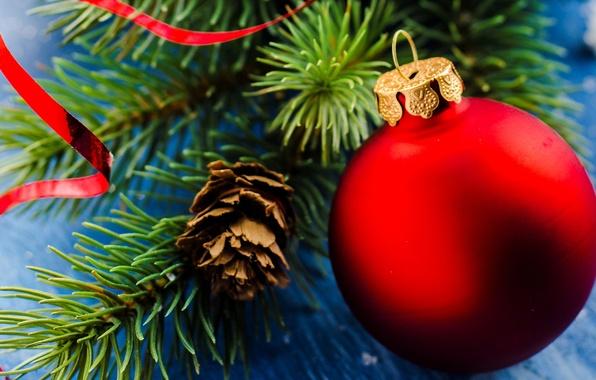 Картинка зима, ветки, красный, игрушка, шар, ель, шарик, Новый Год, Рождество, декорации, шишка, Christmas, праздники, New …
