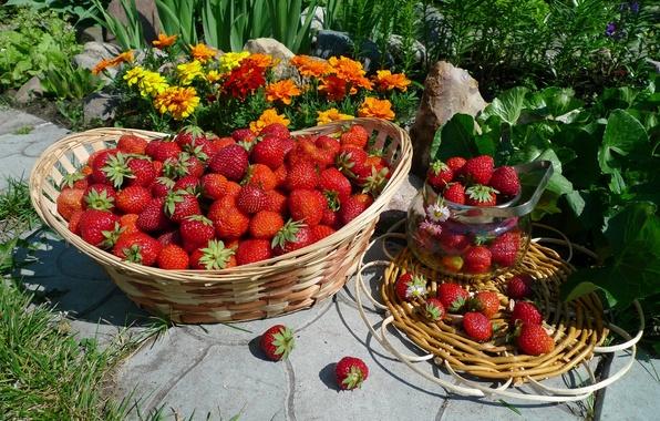 Фото обои лето, ягоды, корзина, клубника