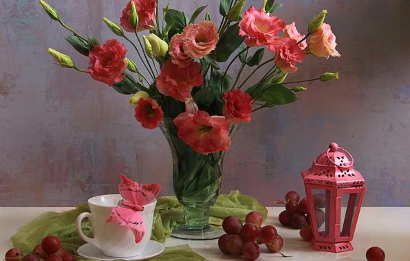 Картинка цветы, лепестки, натюрморт