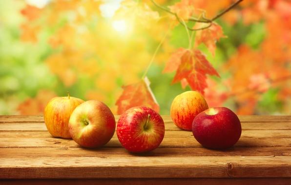 Картинка осень, листья, стол, фон, яблоки, урожай, фрукты