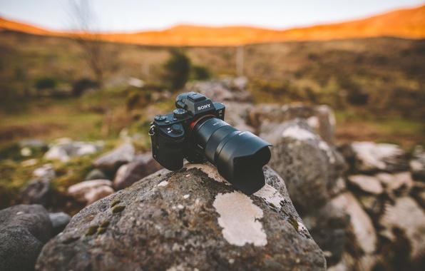 Картинка поле, солнце, камни, холмы, камера, объектив, Sony, боке