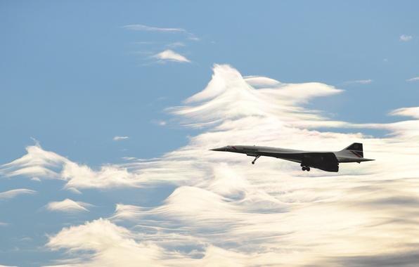 Картинка British Airways, Concorde, Speedbird