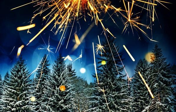 Картинка зима, лес, снег, деревья, ночь, огни, блики, праздник, елки, салют, Новый год, фейерверк