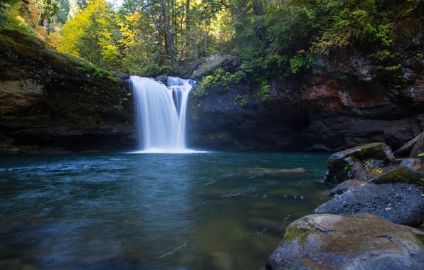 Картинка лес, Oregon, водопад река, the South Fork Coquille River, Coos County