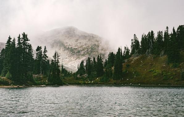 Картинка Горы, Туман, Озеро, Река, Лес, Красота, Пейзаж, Свежесть, Воздух