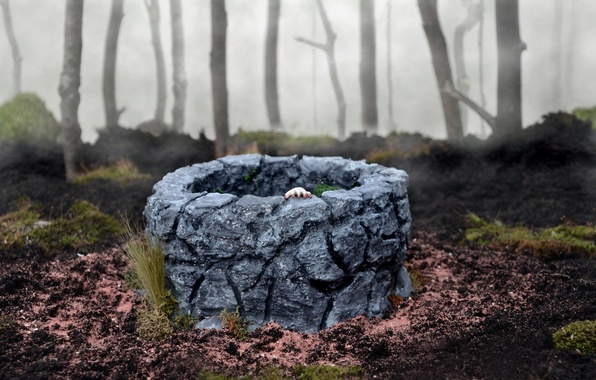 Картинка лес, туман, игрушки, рука, колодец, The Ring, Sadako Yamamura