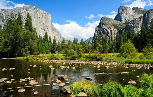 Картинка лес, небо, облака, деревья, горы, река, камни, скалы, Yosemite National Park