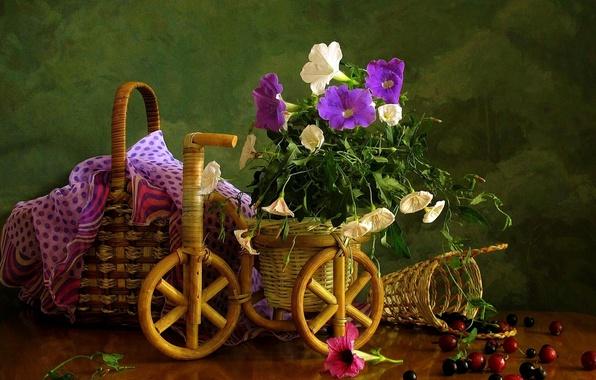 Картинка цветок, лето, цветы, ягоды, корзина, корзинка, вьюн, полевые, красивые, смородина, садовые, вьюнок