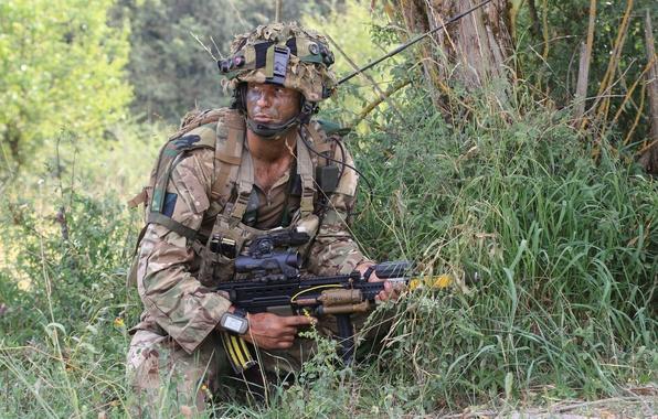 Картинка оружие, армия, солдат, British Army