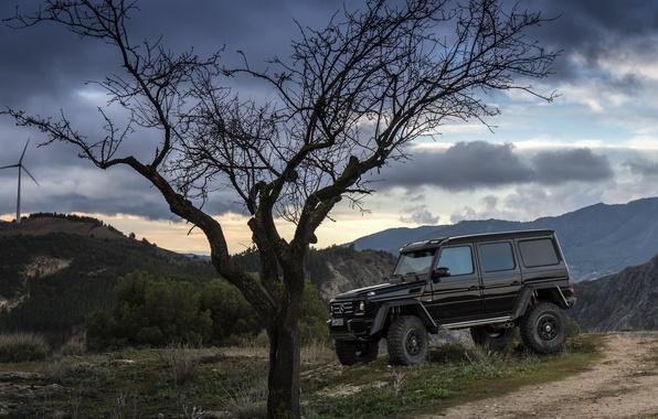 Картинка Concept, дерево, черный, Mercedes-Benz, вечер, мерседес, брабус, 4x4, амг, бенц, W463, 2015, G 500