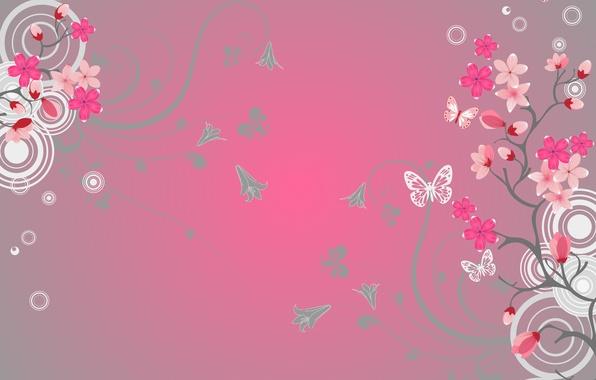 Бабочки картинки на телефон скачать бесплатно 11