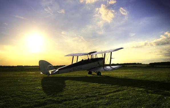 Картинка поле, небо, трава, солнце, тень, британский, тренировочный, самолёт – биплан, Тайгер Мот, Tiger Moth