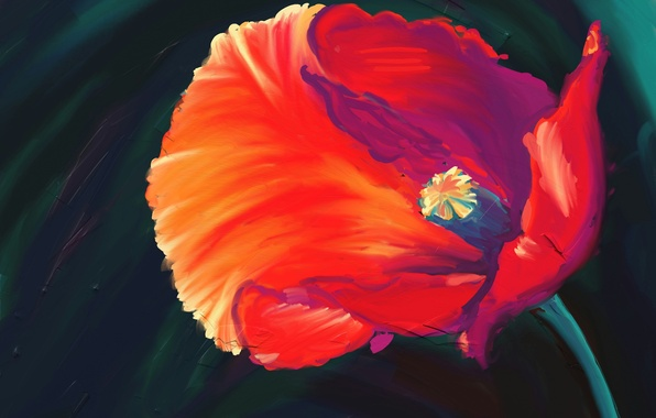 Картинка цветок, красный, мак, арт