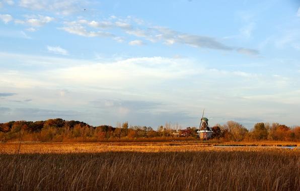 Картинка трава, облака, деревья, мельница