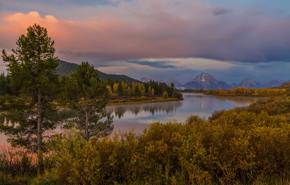 Картинка осень, лес, деревья, закат, горы, река, берег, США, Wyoming, кусты, Grand Teton
