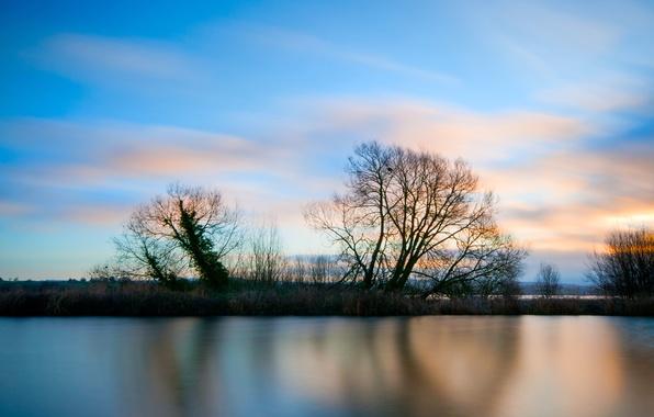 Картинка небо, трава, облака, деревья, закат, озеро, гладь, голубое, берег, Вечер