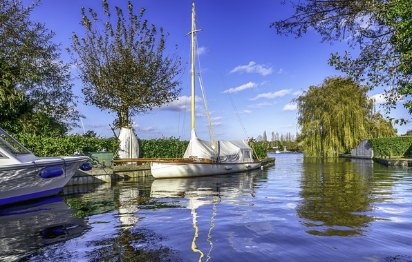 Картинка лето, вода, деревья, парк, лодка, канал
