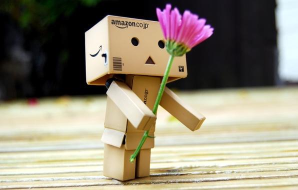 Картинка цветок, подарок, robot, danbo, Danboard, box, toy, flower