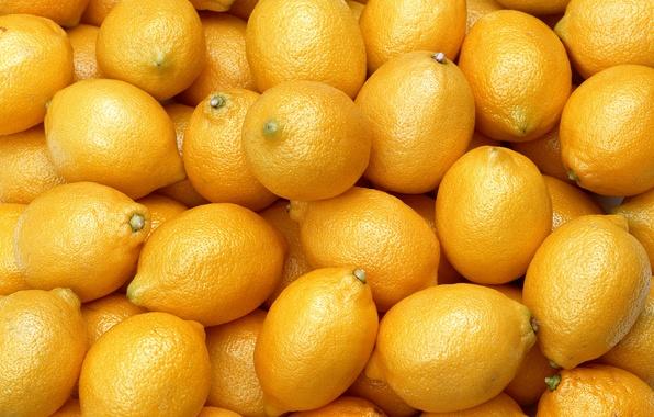Картинка еда, плоды, фрукты, лимоны, цитрусовые