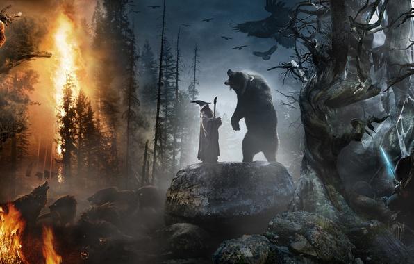Картинка лес, камни, звери, пожар, огонь, коллаж, меч, шляпа, медведь, властелин колец, волки, посох, шершень, ворон, …