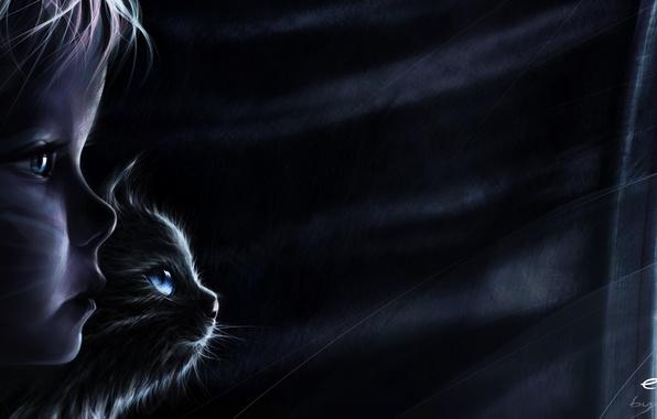 Картинка кот, ночь, дождь, ветер, тайна, окно, тени, побег