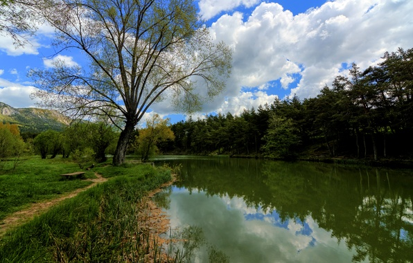 Картинка лес, вода, облака, деревья, горы, озеро, отражение, Франция, лавочка, тропинка, Thorenc