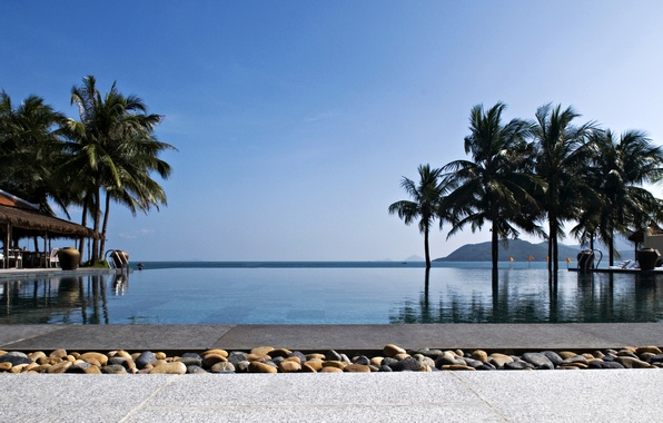 Картинка пальмы, океан, бассейн, экзотика