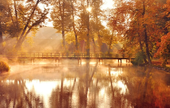 Картинка осень, листья, вода, солнце, свет, деревья, мост, природа, озеро, отражение, желтые, оранжевые