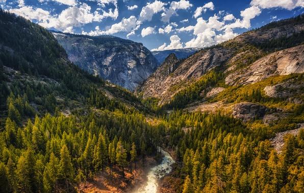 Картинка небо, облака, деревья, горы, камни, скалы, течение, Калифорния, ущелье, США, речка, Tuolumne Meadows